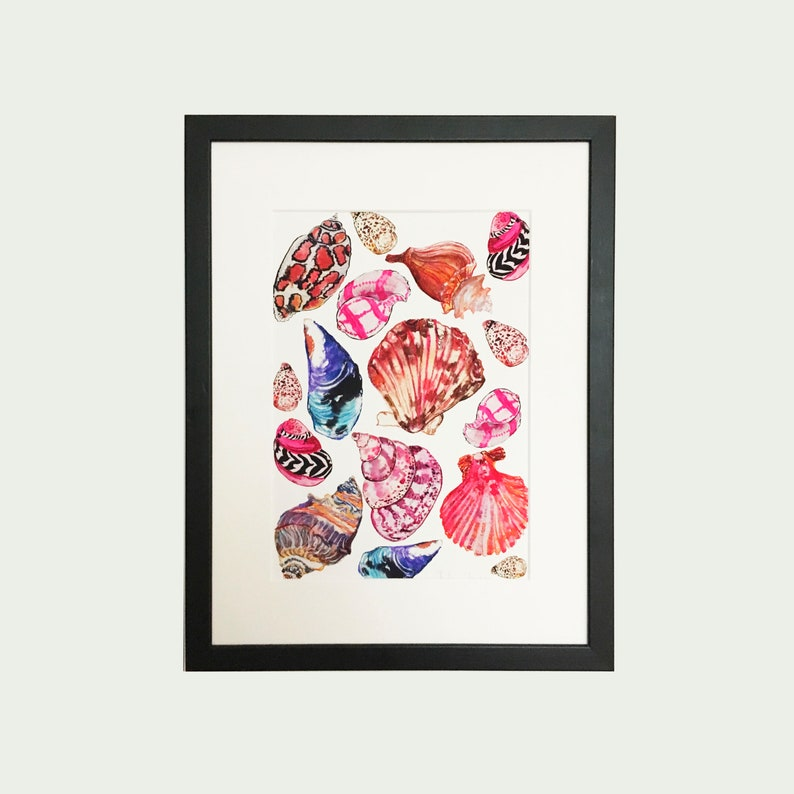 Shells Illustration Print image 0
