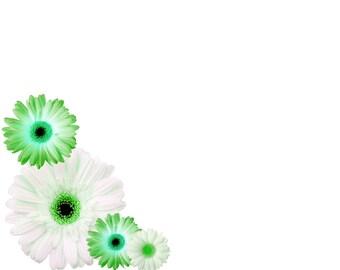 "Daisy Border, Green and White Daisy, Digital Download 5""x7"""