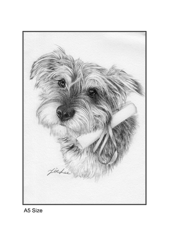 dog, cat. etc pet portrait drawing pencil portrait from a photo. pencil drawing,pet drawing Custom portrait