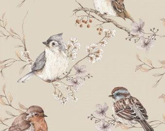 Items Similar To Schumacher Wallpaper Birds And Butterflies