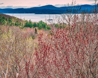New England Photography, Acadia National Park, Maine, Mountains, Large Print Decor