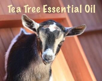 Tea Tree Essential Oil Goat Milk Soap
