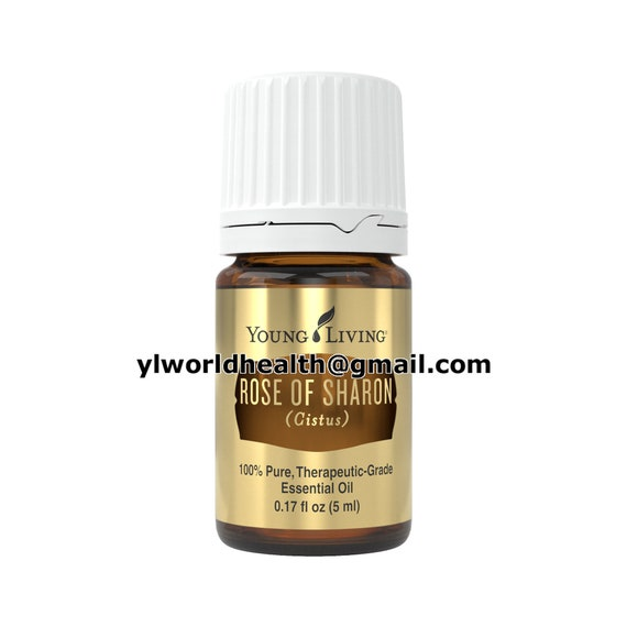 Oils Of Ancient Scripture Rose Of Sharon Essential Oil 5ml Etsy