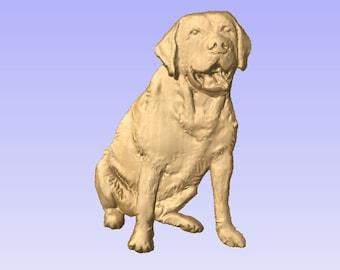 Yellow Labrador retreiver, STL file for CNC carving.
