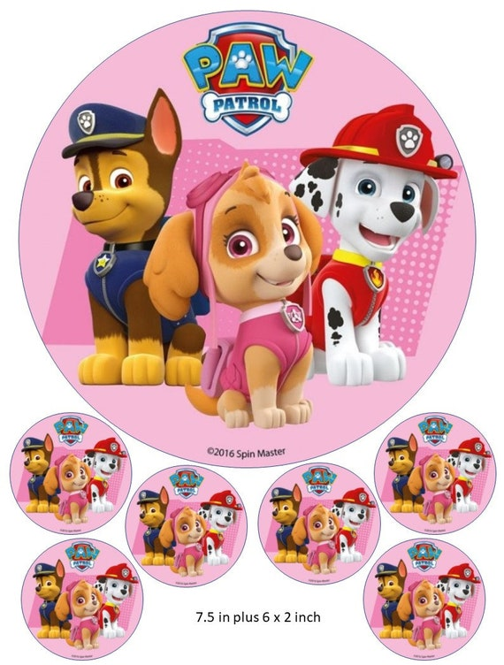 Rocky from Paw Patrol Cake// Cupcake Toppers,Decoration cake decorating up to A3