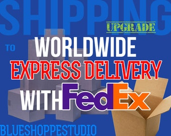 Shipping Upgrade Worldwide Express Delivery with Tracking Number for BlueShoppe Customers