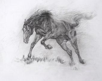 Original Horse Drawing | Pencil Drawing | Equine | wall art | home decor