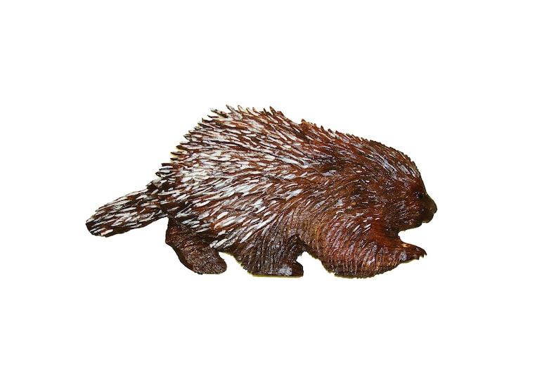 Custom chainsaw carving porcupine made to order wood carving etsy