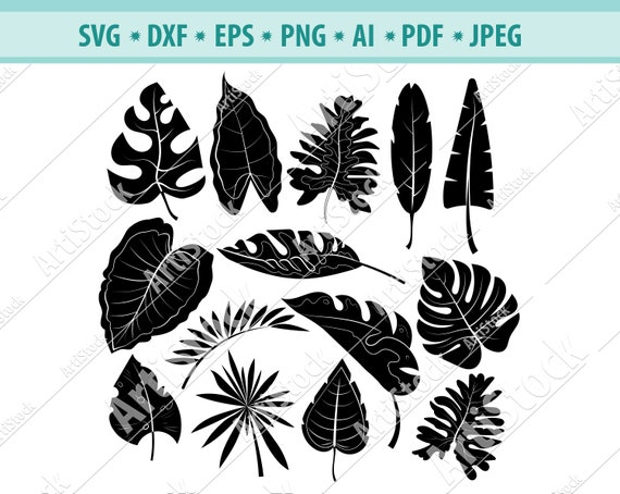 Hand Drawn Palm Leaves Svg Leaves Svg Palm Leaves Cut Files Etsy Instant digital download in svg, eps, dxf, pdf and pdf to edit, color, print and/or cut with cutting machines like cricut and silhouette. etsy