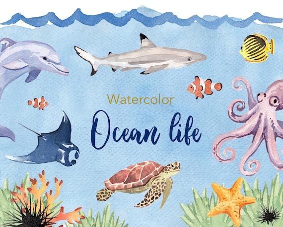 watercolor clipart ocean life clipart watercolour clipart etsy rh etsy com ocean life clip art marine life clipart