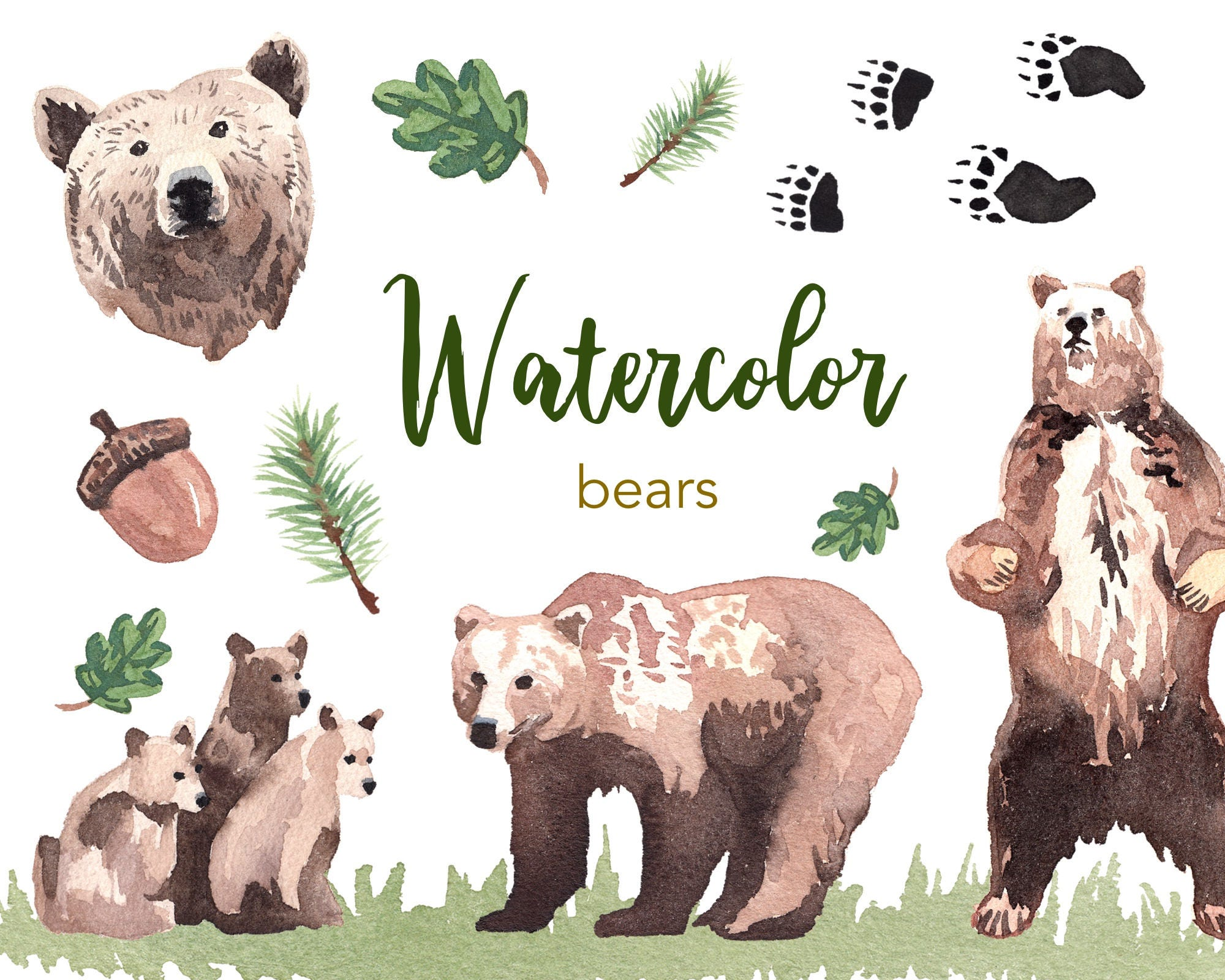 WATERCOLOR CLIPART Bear Clipart Watercolour Set
