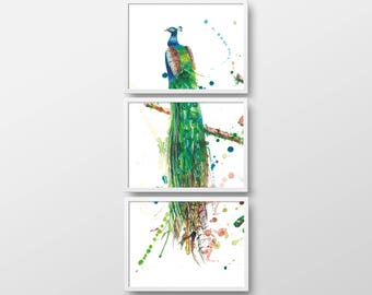 3-piece art print, triptych, Peacock painting 3 x A3, autographed