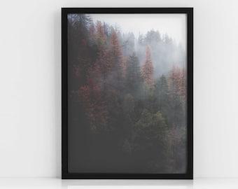 Nordic Dark Forest PRINTABLE|Woodland Print|Wall Art|Tropical|Lounge Decor|Bedroom Decor|Digital Art|Modern Art|Botanical Print