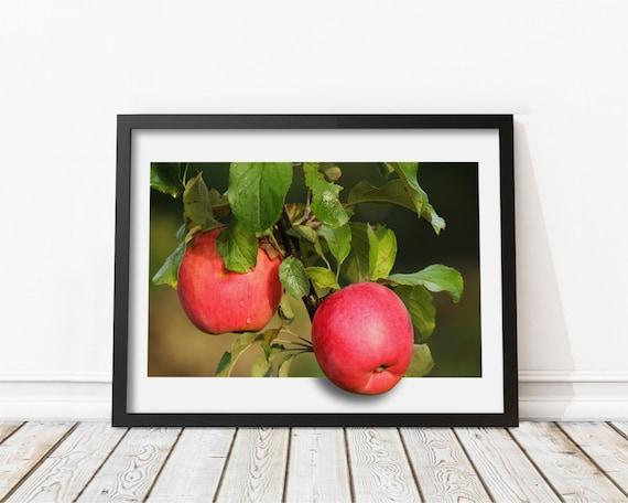 Red apple fruit decoration Apple wall art Kitchen wall art | Etsy