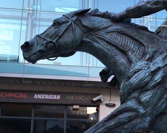 Epsom Horse