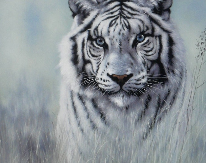 White Tiger Oil Painting Big Cat Wall Art Beautiful Canvas Decor
