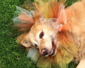 Dog Lioness headdress tutu