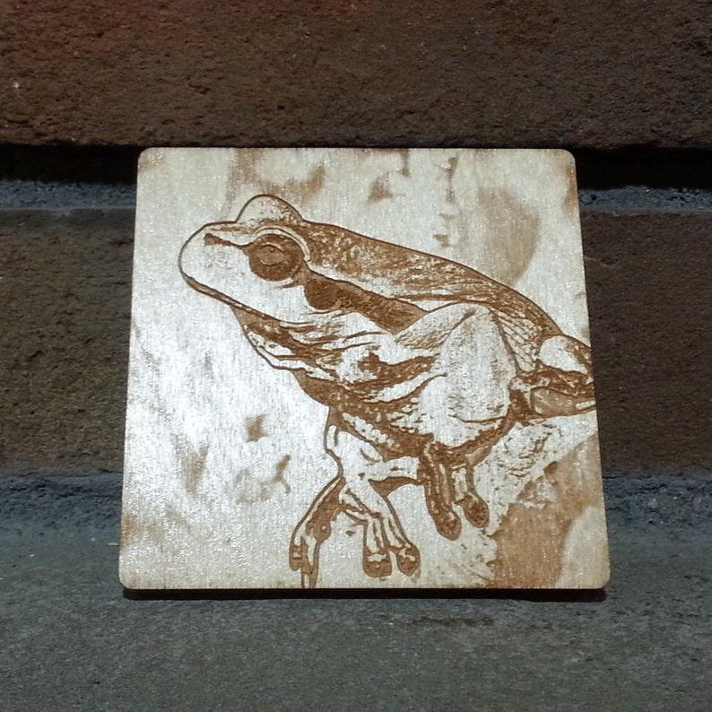 Frog Coaster Frog Magnet Frog Gift Frog Decor Frog Gift image 0