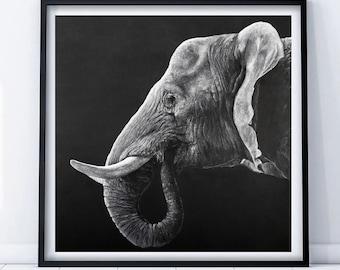 Elephant head on Grey, limited edition Giclee fine art print,signed, art painting by PaulH, artwork, animal art, wallart, acrylic, wildlife