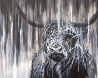 Black Highland cow, limited edition Giclee print, original painting, highland cow,art by PaulH, artwork, animal art, wallart, acrylic, oil