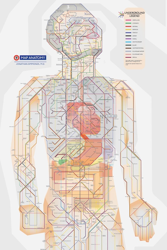 poster map of entire human body (a schematic done in the style of the london underground) cb amplifier schematics body schematic diagram #10