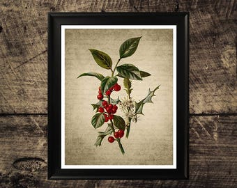 Vintage wild holly wall art, home decor, wild holly print, vintage wall art, printable art, instant download