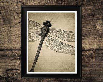 Vintage Libelle-Art, Druck, Libelle Flügel, Libelle druckbare Kunst, Kunst, Libelle-Wand-Dekor