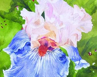 Greeting card with iris