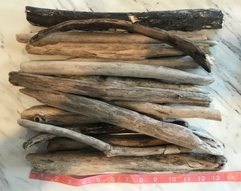 Driftwood (11-15 inches) Chesapeake Bay