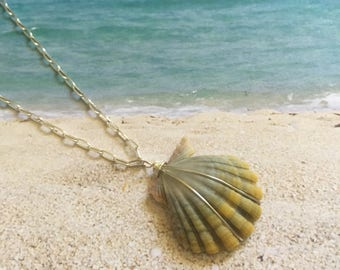 Moonrise Shell Necklace