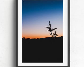 Straw in sunset in a field - Tønsberg #4 // Print yourself // Design element // Style your home or office