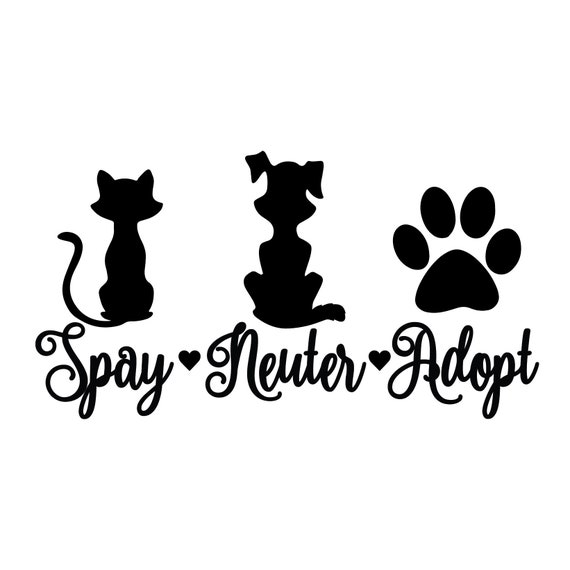 """2 of 5/"""" Custom Name Dog Cat Paw //A pets animals car bumper stickers decalsdiecut"""