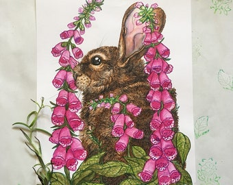 A4 Original  of Rabbit in Foxgloves by Morgana Weeks