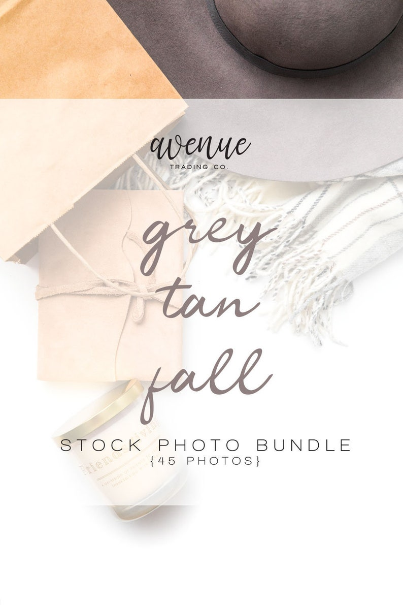 Grey & Tan Fall Styled Stock Photo Bundle  Seasonal Styled image 0