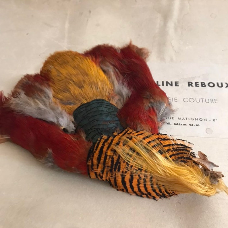 Vintage and very rare, complete Chinese Golden Pheasant bird - vintage hat  makers supplies c1890 - hat supplies - millinery