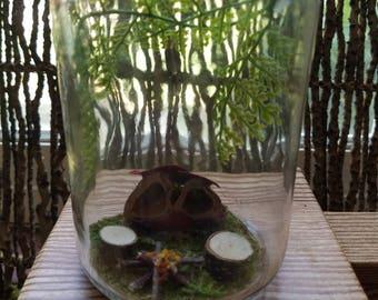 Mini fairy garden- Mason Jar terrarium