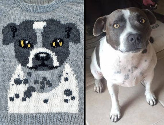 Custom Knitting Pattern Chart Pets Sweater Cat Dog Intarsia Etsy