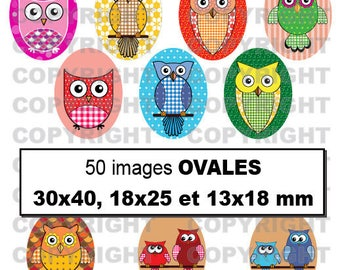 50 digital images for theme OWL multocolores - oval cabochon