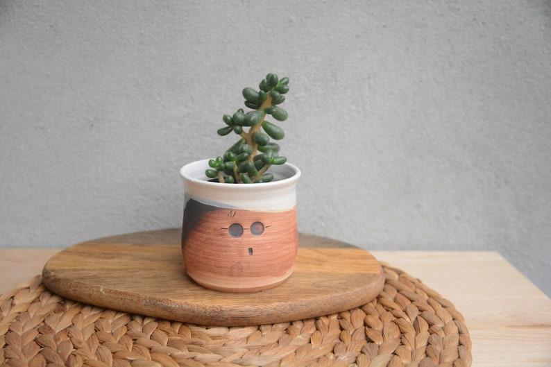 Harry Potter PlanterPotter Head Funny Cactus Planter Unique Ceramic Succulent Planter Brukiestudio Brukie Studio