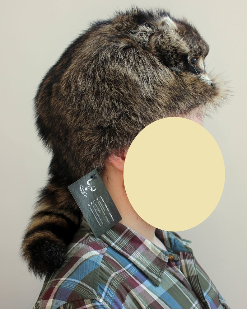 3e88e0cb7f119 Trapper s hat real raccoon fur real fur real raccoon