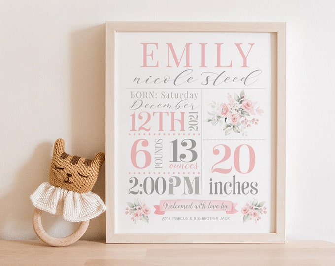Girl Baby Stats Sign   Nursery Stats Wall Art   Birth Announcement Print   Nursery Decor   Newborn Printable   Personalized Baby Gift