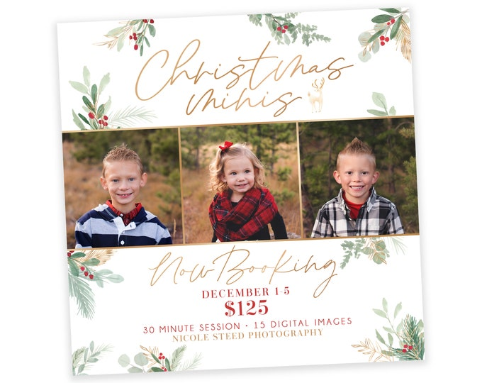 Christmas Minis Now Booking Template - Instagram Ad Template - Digital Design - Photography Marketing Ad - Mini Session Template - Photoshop