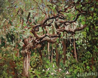 Oil Painting, Fine Art, Landscape, Ottawa, Forest, Green