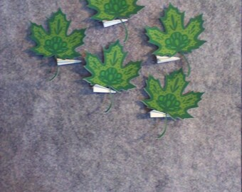 5 Pack of Color Maple Leaf