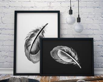 Stylish Feather Print A4, A3 & A3+