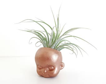 Copper effect concrete baby doll head air plant planter