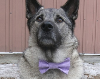 Light Purple with White Dots  Patterned Bow Tie