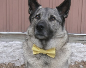Yellow Circle Dot  Patterned Bow Tie