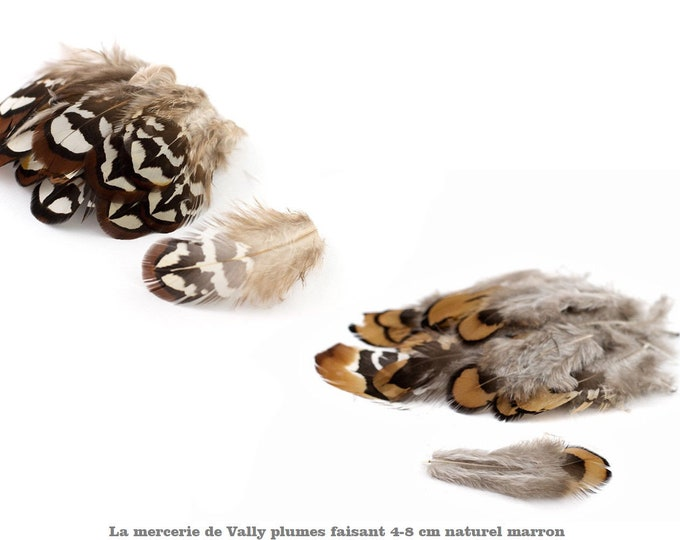 Genuine pheasant feathers with a natural pattern of about 5 to 8cm