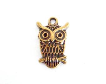 x 1 OWL bird charm in antique bronze 22 mm x 15 mm